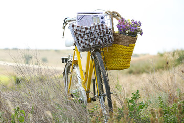 Bicycle with basket of flowers in meadow during sunset