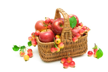 ripe apples in a basket on a white background
