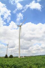 Wind turbines in cassava farm