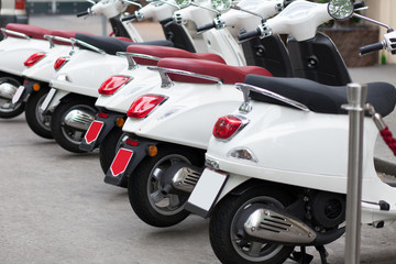 row of white motorcycles