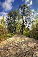 Brukowa droga, krajobraz wiejski