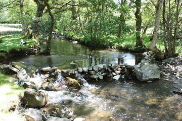 stone dam acoss a small stream in a wooded area