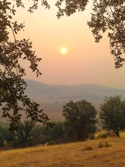 Hazy tinted air - smoke coming from Yosemite wild fires