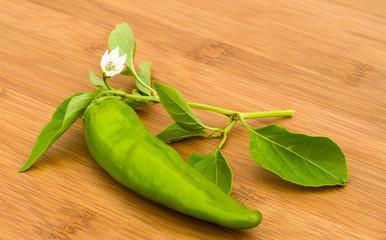 Chili Pepper,