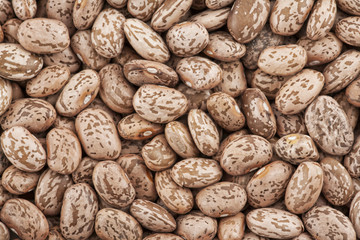 Close up of Pinto Beans