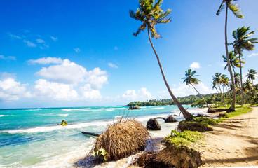 Gute Reise: Traumstrand in der Karibik :)
