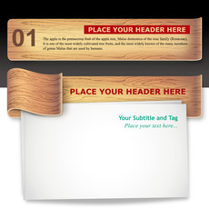 Wood-texture Infographic Template