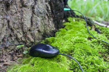 Computer mouse on the background of moss and tree