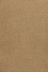 Artist Unprimed Cotton Duck Coarse Grain Canvas Grunge Texture
