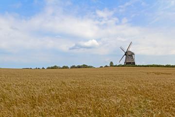 Mühle im Feld