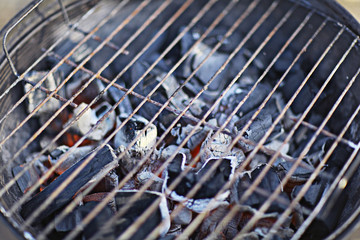 coals in the grill texture