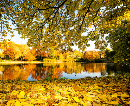 Autumn park with silent lake :) - 68872237