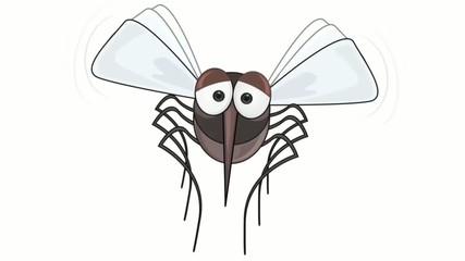 mosquito animation