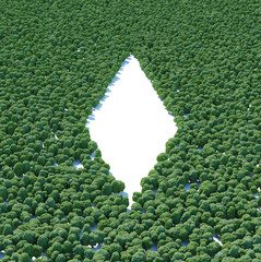 Rhomb forest