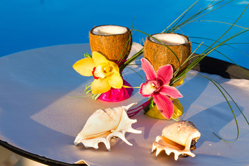 two glasses of coconut with orchids and two seashells
