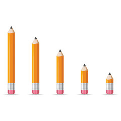Pencils vector illustration isolated