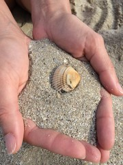 Sabbia sulle mani