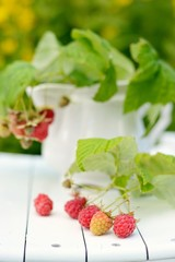 Bouquet of raspberries