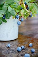 mug with blueberry