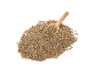 Pile of hemp seeds with wood spoon on white background