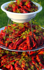.Boiled or steamed crawfish