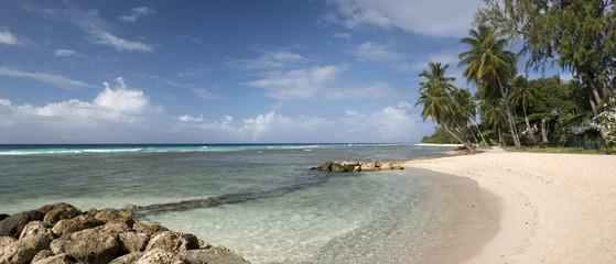 Beach at Barbados