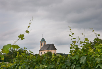 little church between vineyards