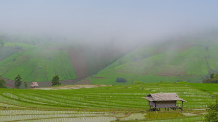 time lapse clouds and mist float on terrace rice farm