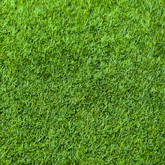 Green grass seamless texture. Seamless in only horizontal dimens