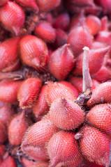 Zalacca tropical fruit in summer