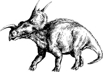 hand drawn arrhinocerathops