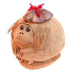 Monkey from a coconut