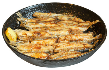 fried fish capelin on black frying pan isolated