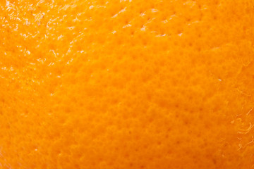Closeup of orange peel