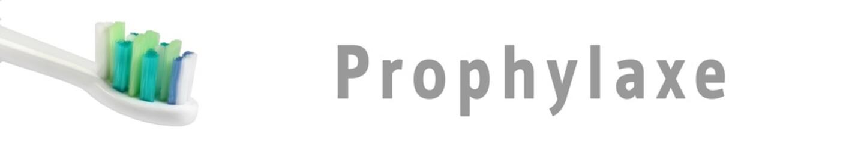 zaps00 - ZahnArztPraxisSchild 00 - Prophylaxe - 6zu1 - g1100