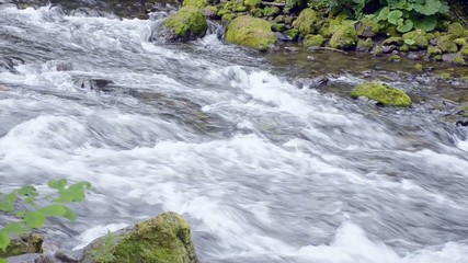 stream flow with force in the forest