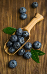 Fresh blueberries in a wooden scoop