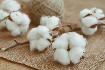 Flower design with fluffy cotton bolls and jute rope hank