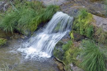 Bonita cascada rodeada de musgo sobre las rocas