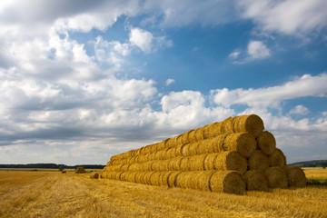 Hay bales on a big pile