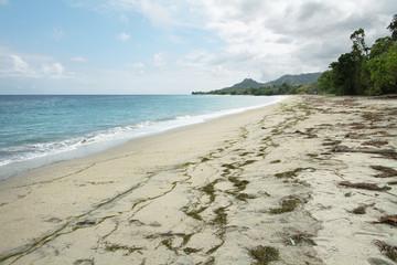 Beach in Flores island