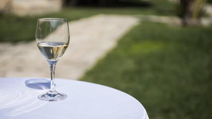 bicchiere con vino bianco sul tavolo in giardino