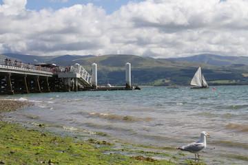 Menai Strait Anglesey