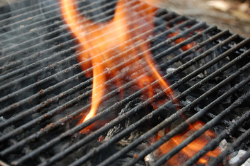 Embers for barbecue