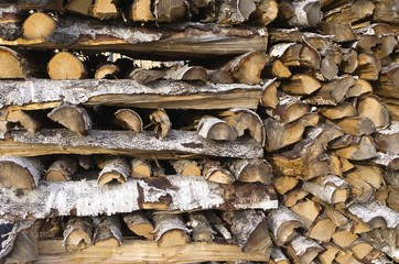 Closeup of woodpile with chunk of birch wood.