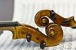 beautiful violin on a sheet music background - 68917611