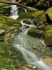 Rapids on a mountain stream. Giant mountains, Czech republic