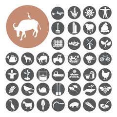 Agriculture and Farming icons set. Illustration eps10