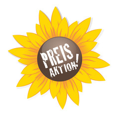Preisaktion Sonnenblume