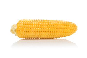 Corn Cob on white background